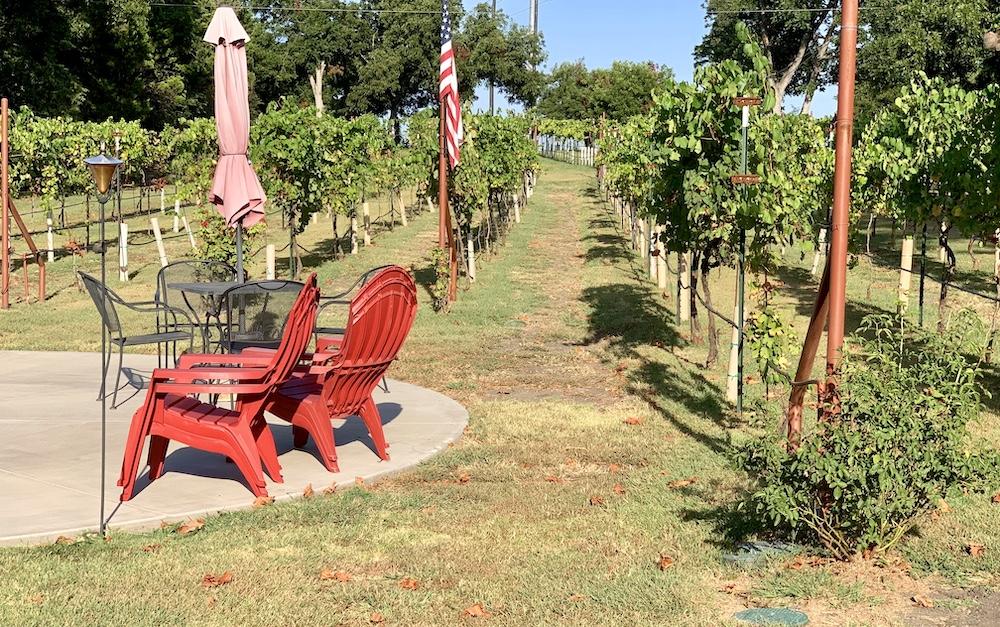 Vineyard & Patio
